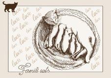Postcard cat Stock Photos