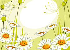Postcard with daisies 2. Stock Images