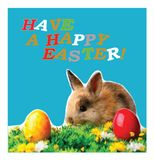A postcard depicting a rabbit and the wishes of a happy Easter holiday. vector illustration