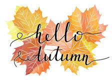 postcard design of bright autumn maple leaf. Royalty Free Stock Photography