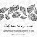 Postcard design with sea shells. Hand drawn  illustration.  Stock Photo