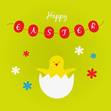 Postcard Easter chicken Royalty Free Stock Photography