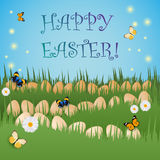 Postcard for Easter with grass, eggs, chamomiles and butterflies Stock Photography
