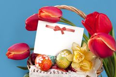 Postcard easter  and spring flowers Royalty Free Stock Images