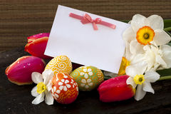 Postcard easter  and spring flowers Royalty Free Stock Photography