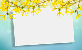 Postcard with elegant  flowers and empty  place for your text Royalty Free Stock Photography