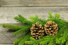 Postcard with evergreens. Pine cones and evergreens in front of a wooden background stock image