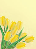 Postcard with fresh flowers tulips  and empty  place for your te Stock Photography