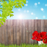 Postcard with fresh spring foliage and empty  place for your tex Royalty Free Stock Photos