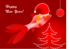 Postcard with funny fish. Cristmas card  with funny fish in red Stock Photos
