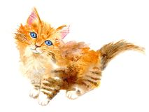 Postcard with ginger kitten.Red cat greeting card. Watercolor hand drawn illustration.White background Stock Image