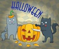 Postcard for Halloween, cartoon cats cut the pumpkin Stock Image