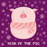 Postcard Happy Year of the Pig stock photos