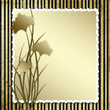 Postcard-invitation with brown  carnation Stock Photography