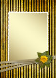 Postcard for invitation with gold frame Stock Photos