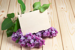 Postcard with lilac flowers Royalty Free Stock Photo