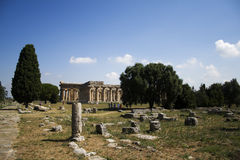 Postcard of Paestum. Ruins of columns in Paestum with the greek temple on the background(Southern Italy Stock Photography