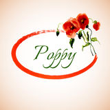 Postcard painted red poppy Stock Images
