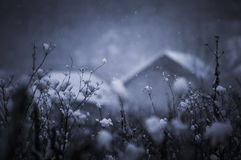 Postcard photo of snow falling in winter Stock Photography