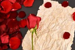 Postcard on red rose petals. Old paper. Vintage stock images