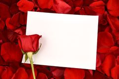 Postcard on red rose petals. White paper stock image