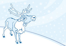 Postcard with a reindeer Royalty Free Stock Photo