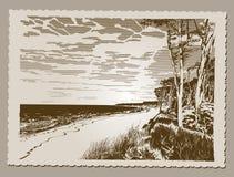 Postcard Seaside. Postcard of Seaside at Baltic Sea, Darss Coast, editable vector illustration - EPS8 Stock Photo