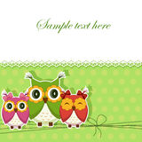 Postcard with three owls Royalty Free Stock Photos