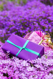Postcard vertical two gifts atop a sea of spring flowers Royalty Free Stock Photo