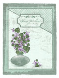 Postcard with violet at grunge background Stock Images