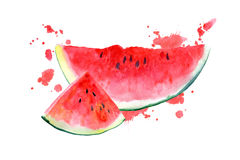 Postcard with watermelon and blotch. Fruit picture.Watercolor hand drawn illustration Stock Images