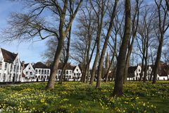 Postcards of Bruges beguinage 9 Stock Image