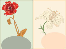 Postcards with poppy and lily Royalty Free Stock Image