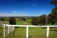 Poste Australia del caballo imagen de archivo libre de regalías