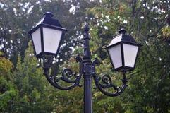 Poste de luz da imagem no parque fotografia de stock