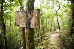 Poste de muestra de la selva Fotografía de archivo