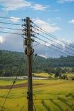 Poste eléctrico Fotografía de archivo libre de regalías