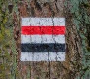 Poste indicador de la dirección del árbol Imagen de archivo
