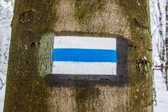 Poste indicador del árbol Foto de archivo