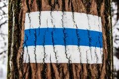 Poste indicador del árbol Imagen de archivo libre de regalías