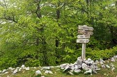 Poste indicador en el bosque Fotos de archivo