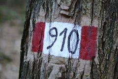 Poste indicador pintado en un árbol con el número de la trayectoria Fotografía de archivo