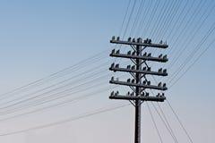 Poste viejo de la electricidad imagen de archivo libre de regalías