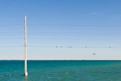 Poste y líneas de potencia en el mar Foto de archivo libre de regalías