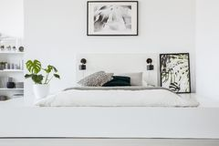 Poster above bed on platform in white bedroom interior with plan. T and lamps. Real photo stock images