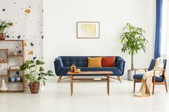 Poster above blue settee in white apartment interior with armchair, wooden table and plants. Real photo. Concept stock photos