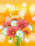 Poster, advertising of spring flowers Gerber Stock Photo