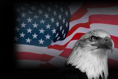 Poster American flag with eagle. Colour poster American flag with blakc and white eagle. National USA symbol royalty free stock image