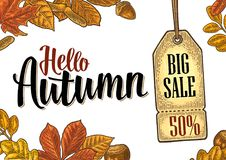 Poster AUTUMN lettering with set leaf and acorn. Vector engraving. Poster HELLO AUTUMN lettering with set leaf and acorn. Hanging BIG Sale tag with discount Royalty Free Stock Photo