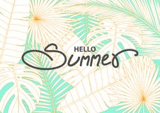 Banner template for summer event. royalty free illustration